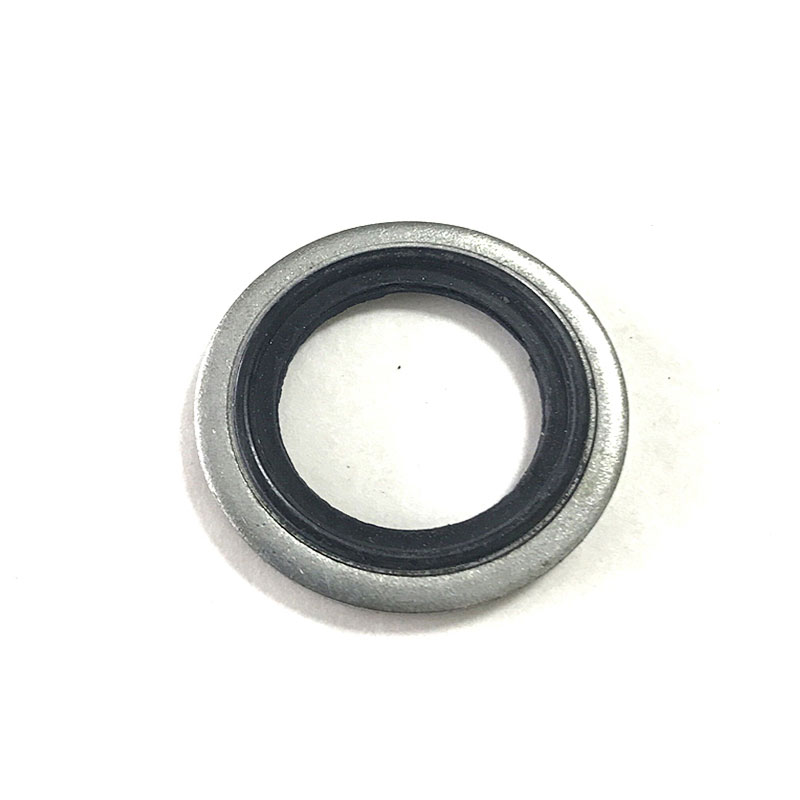 Carbon steel and NBR FKM combined gasket