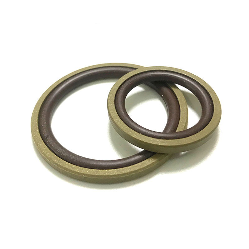 Composite BSF Glyd ring for holes
